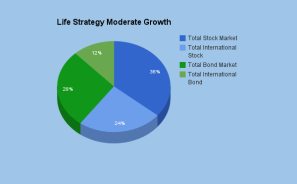 Life strategy moderate