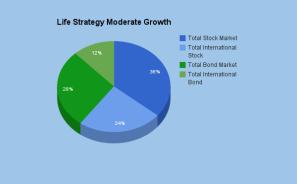 Life strategy moderate