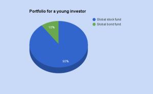 Portfolio for a young investor