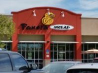 Panera Bread Tampa